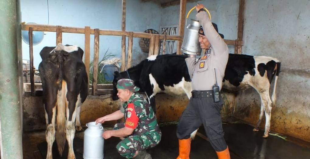 Soliditas TNI-Polri Membangun Desa Alamendah, Rancabali